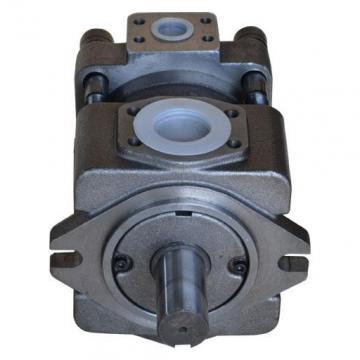 IPH-4B-32-20 Pompa ad ingranaggi idraulica