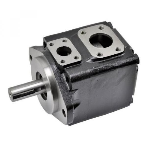 PV2R34-76-136-FREAA Pompa a palette idraulica
