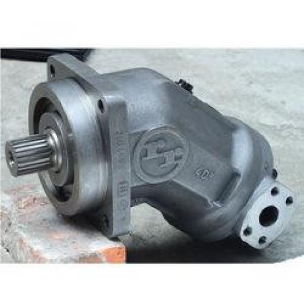 PVS-2A-35N3-12 Pompa / motore a pistone idraulico