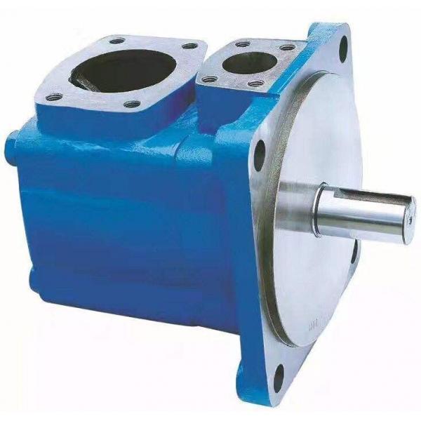 PV29-2R1B-C02 Pompa / motore a pistone idraulico