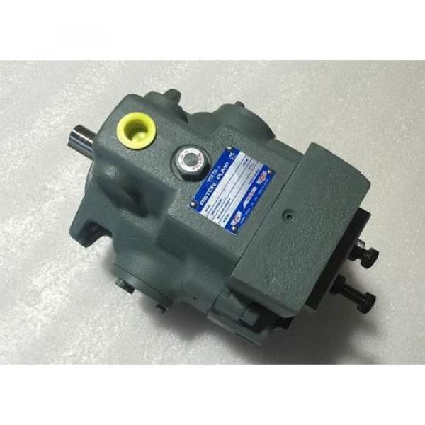 P40VR-11-CC-10 Pompa / motore a pistone idraulico