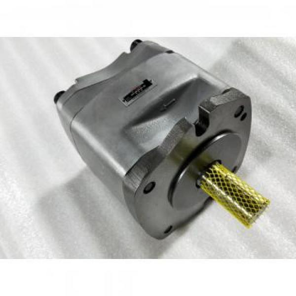 PVB45-RSF-20-C10 Pompa / motore a pistone idraulico