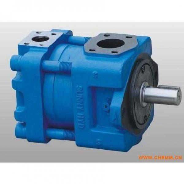 R918C02383 AZPF-22-022LRR20MB Pompa ad ingranaggi idraulica