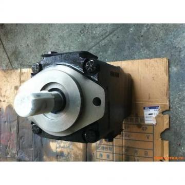 2520VQ17C11 11CC20 Pompa a palette idraulica