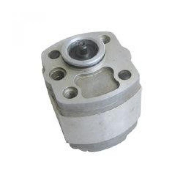 QT2323-6.3-6.3MN-S1162-A Pompa ad ingranaggi idraulica