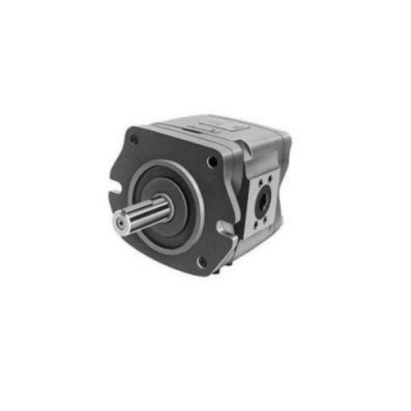 CBW-F310-CFP Pompa ad ingranaggi idraulica